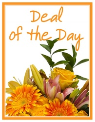 Deal of the Day from Monrovia Floral in Monrovia, CA