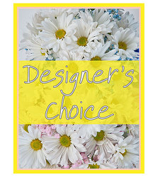 Designers Choice - New Baby from Monrovia Floral in Monrovia, CA