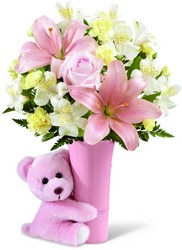 The FTD Baby Girl Big Hug Bouquet from Monrovia Floral in Monrovia, CA