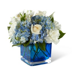 The FTD Peace & Light Hanukkah Bouquet from Monrovia Floral in Monrovia, CA