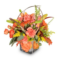 Leaf Your Worries Behind from Monrovia Floral in Monrovia, CA