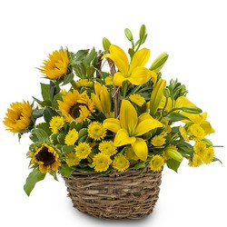 Basket of Sunshine from Monrovia Floral in Monrovia, CA