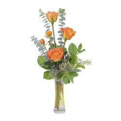 Orange Simplicity from Monrovia Floral in Monrovia, CA