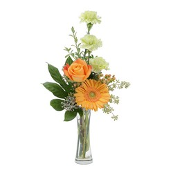 Orange U Glad from Monrovia Floral in Monrovia, CA