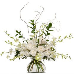 White Elegance from Monrovia Floral in Monrovia, CA